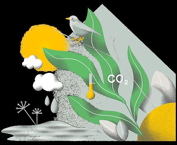 Ilustracja związana ze środowiskiem
